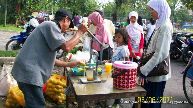 [cml_media_alt id='1325']jeruk manis pacitan yang dijual di sunday morning[/cml_media_alt]